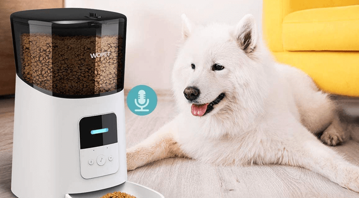 Automatic Food Dispenser Giveaway