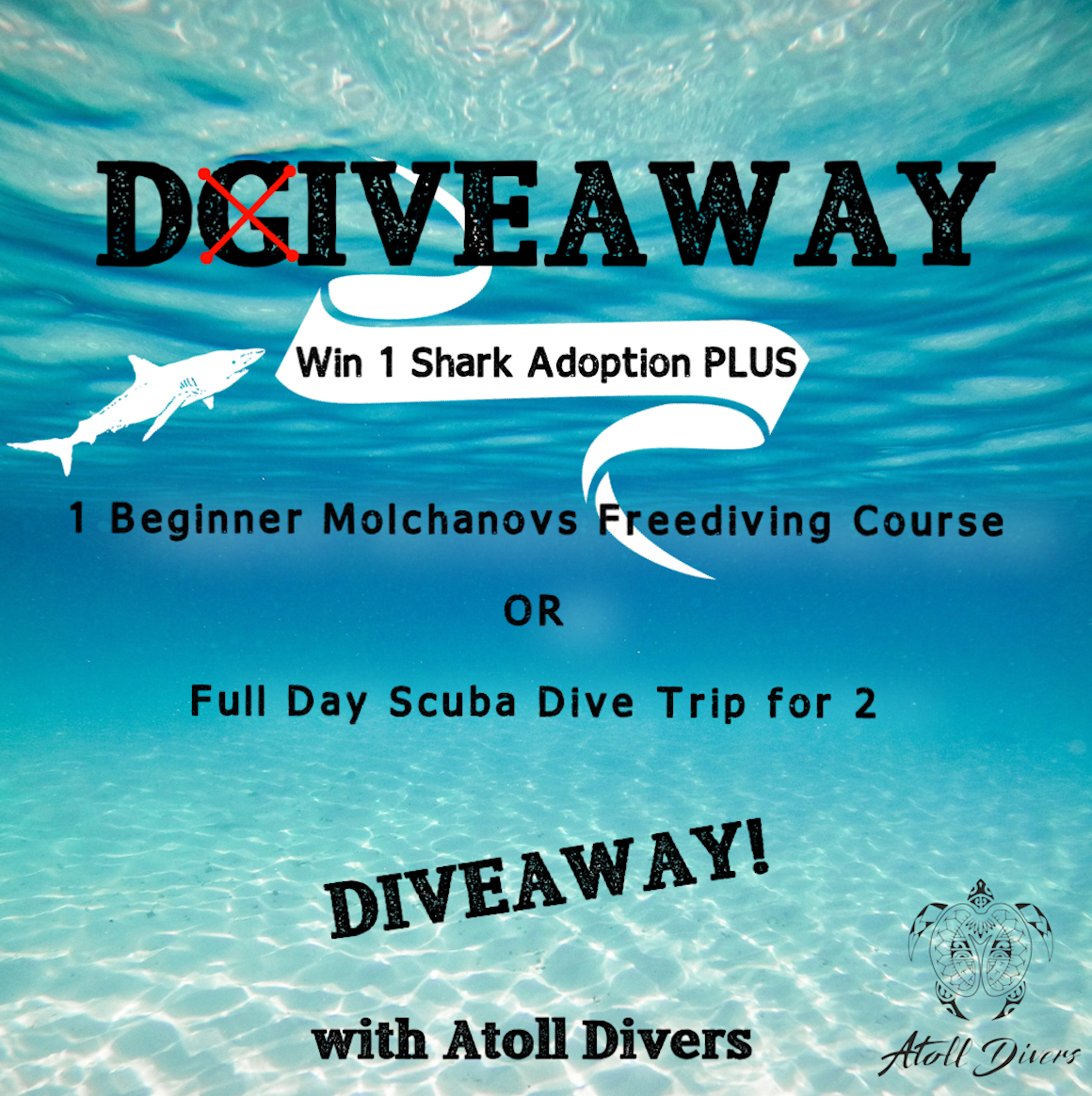 Freediving Course OR Scuba Dive Trip Giveaway