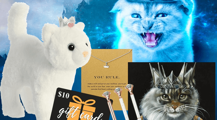 Molly Fitz's Cat Castle Giveaway